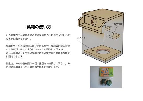 巣箱の使い方